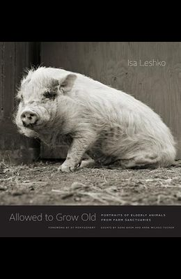 Allowed to Grow Old: Portraits of Elderly Animals from Farm Sanctuaries