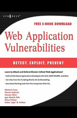 Web application vulnerabilities detect exploit prevent pdf