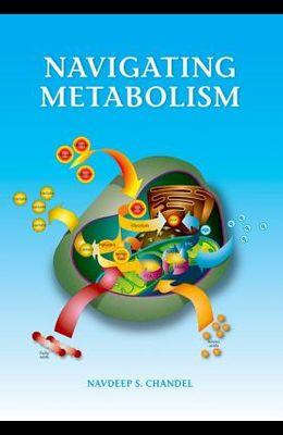 Navigating Metabolism