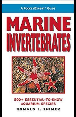 Marine Invertebrates: 500+ Essential-To-Know Aquarium Species